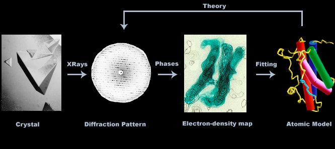 Crystallography Process